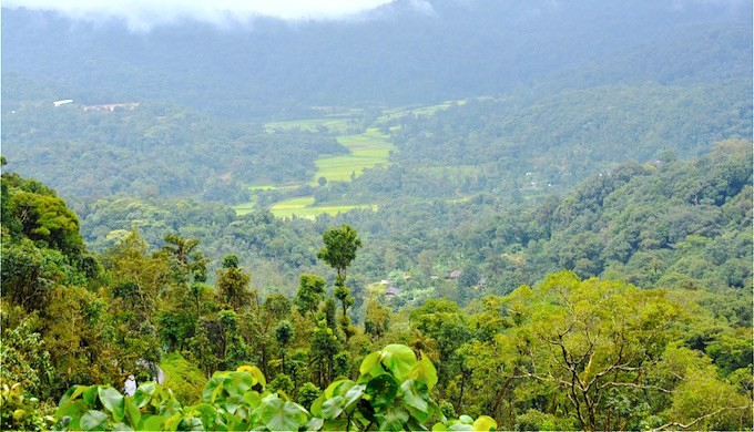 Kodagu is included in the ecologically sensitive zone recommended by the K Kasturirangan Committee on Western Ghats. Photo credit: S Gopikrishna Warrier