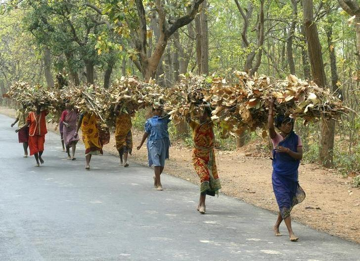 Adivasi women bring home forest produce in West Bengal. Photo credit: Reuters